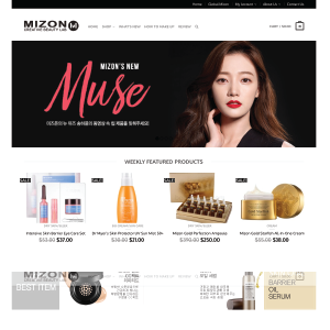 website-Mizon